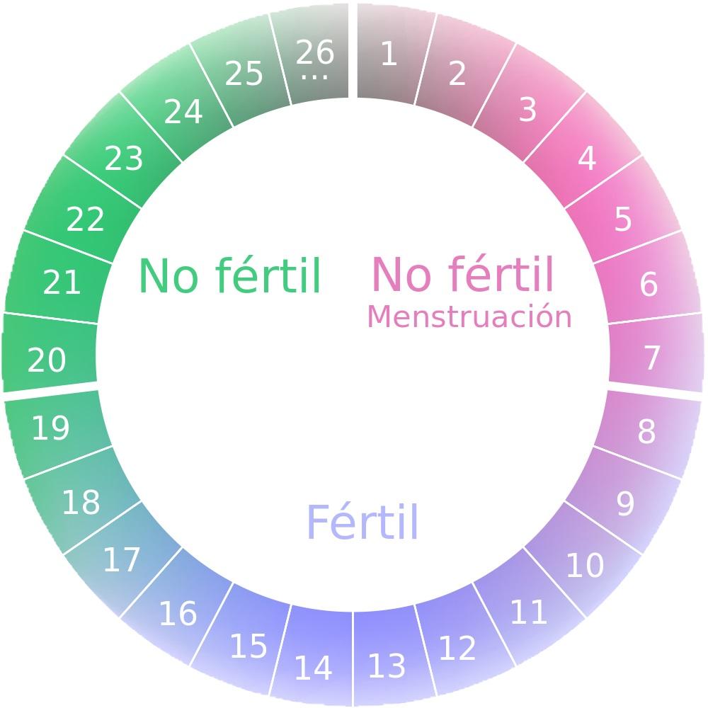 Se puede estar embarazada y tener menstruacion