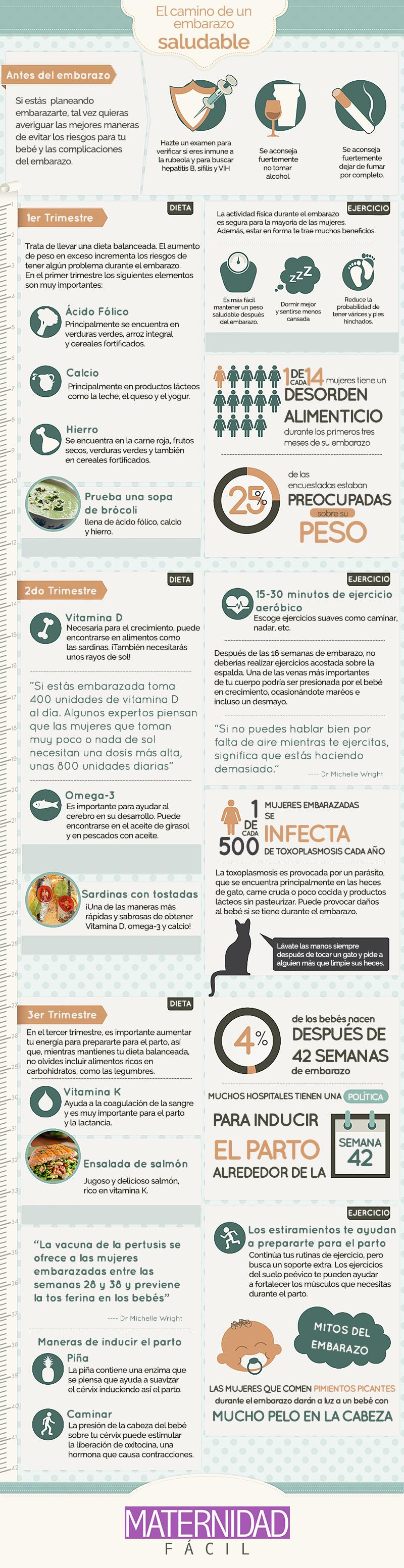 infografia embarazo saludable