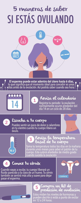 infografia signos ovulacion